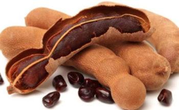 Como usar o Tamarindo para Diabetes, Gordura no Figado e Emagrecer