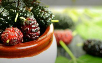 """Planta conhecida como """"MILAGROSA"""" equilibra os hormônios e emagrece 2kg por semana"""